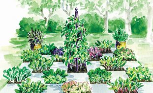 Shaded Checkerboard Garden Design Calimesa Ca