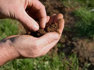 "Garden Soil, Soil Preparation ""Dream Team's"" Portland Garden Shutterstock.com New York, NY"
