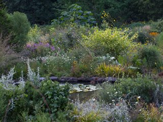 "Lush Plantings Of Ornamental Grasses And Perennials Surround The Pond In Summer ""Dream Team's"" Portland Garden Chanticleer Wayne, PA"