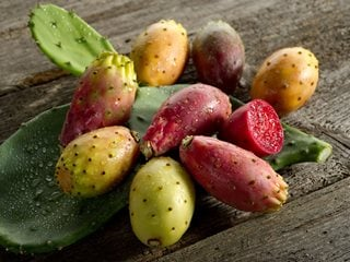 "Prickly Pear Fruit, Nopales, Edible Fruit ""Dream Team's"" Portland Garden Shutterstock.com New York, NY"