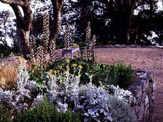 Garden Design Calimesa, CA