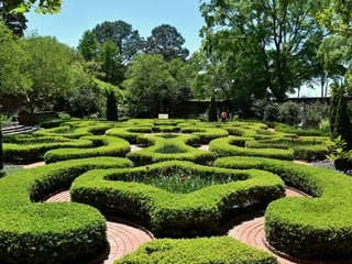 Clipped Boxwood, Boxwood Garden Shutterstock.com New York, NY