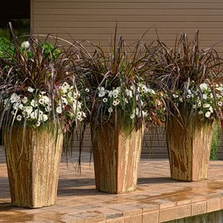 Brown Flower Containers, Patio Containers Proven Winners Sycamore, IL