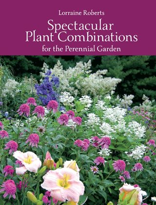 Spectacular Plant Combinations For The Perennial Garden  Plant Paradise Country Gardens Caledon, ON