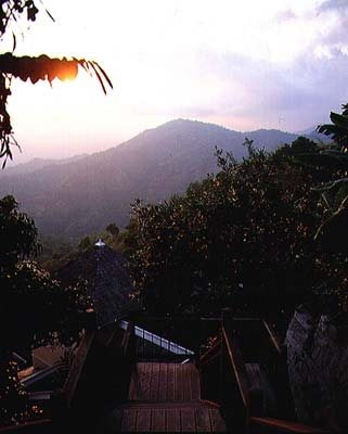 Strawberry Hill Irish Town, Jamaica
