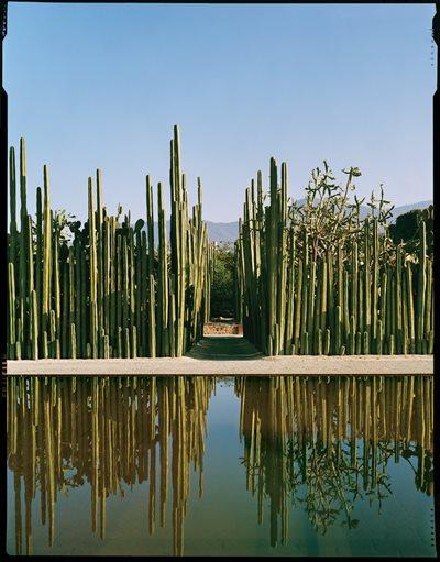 Oaxaca 39 s ethnobotanical garden garden design for Jardin etnobotanico oaxaca