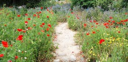 Southern California Gardens Garden Design