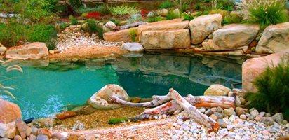 Natural Shoreline Landscape Design Garden Design Calimesa, CA