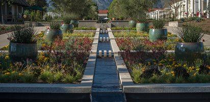 Drought-Tolerant, Entryway The Huntington Library, Art Collections, and Botanical Gardens ,