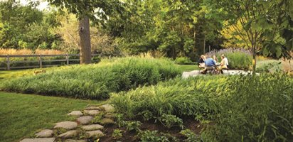 Landscape Design For Front Yards And Backyards Garden