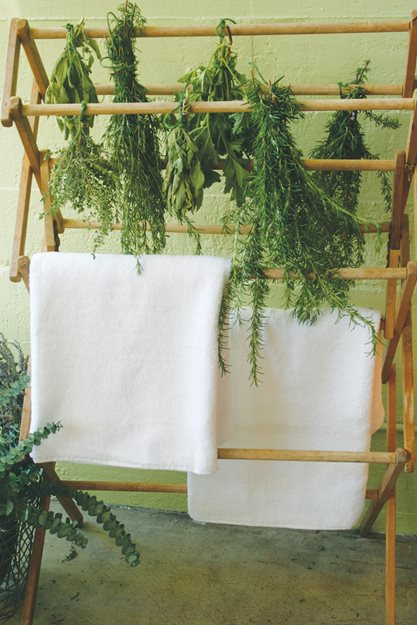 "Drying Herbs, Hanging Herbs ""Dream Team's"" Portland Garden St. Lynn's Press Pittsburgh, PA"