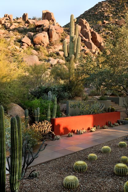 Desert garden design ideas garden design Modern desert landscaping ideas