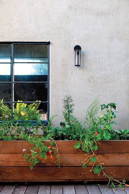 """Dream Team's"" Portland Garden Garden Design Calimesa, CA"