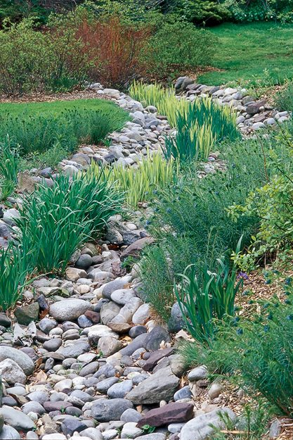 How to design a rain garden garden design for Irish garden designs