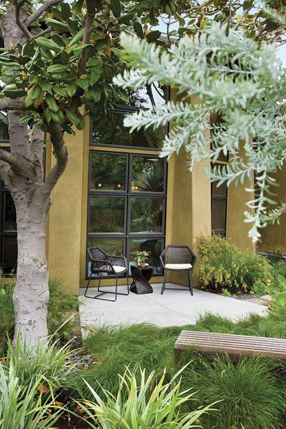 Del Mar Small Family Garden Garden Design