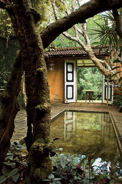 The tropical garden reinvented garden design for Garden designs sri lanka