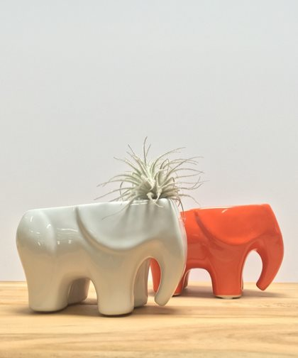 Elephant Planter, Tabletop Planter Potted Los Angeles, CA
