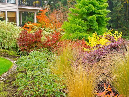 Fall Garden, Garden Bed Garden Diva Designs Hillsboro, OR