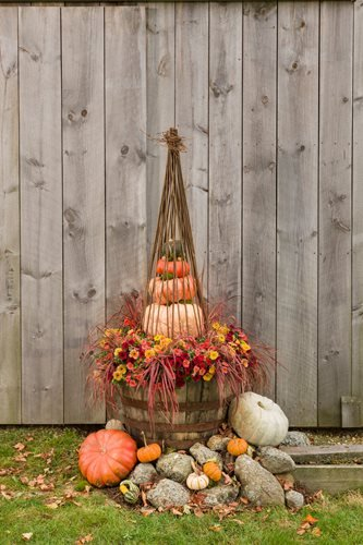 21 Fall Planter Ideas Container Garden Pictures Plants Tips