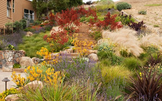 "Landscape Solution ""Dream Team's"" Portland Garden Garden Design Calimesa, CA"
