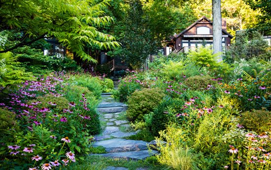 "Perfect Pairing ""Dream Team's"" Portland Garden Garden Design Calimesa, CA"