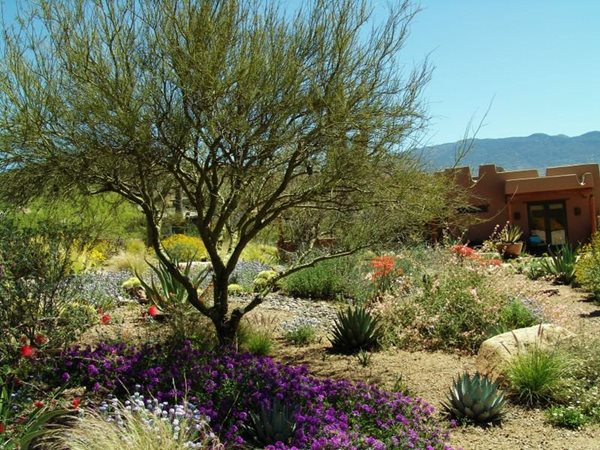2011 APLD Annual International Landscape Design Awards Boxhill Tucson, AZ