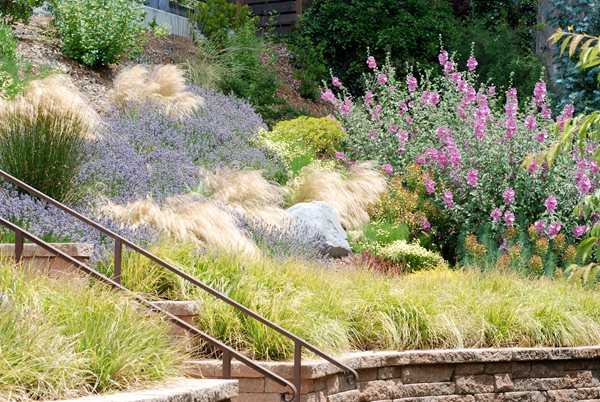 2011 APLD Annual International Landscape Design Awards Lesley Turner/LTLA Design Berkeley, CA