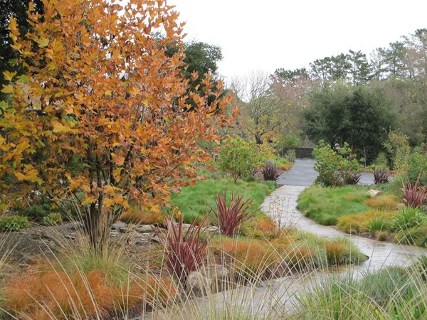 2011 APLD Annual International Landscape Design Awards Suzanne Arca Design Albany, CA
