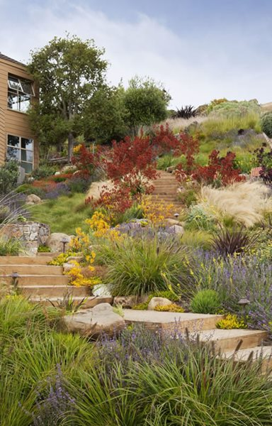 2013 APLD International Landscape Design Awards Garden Design Calimesa, CA