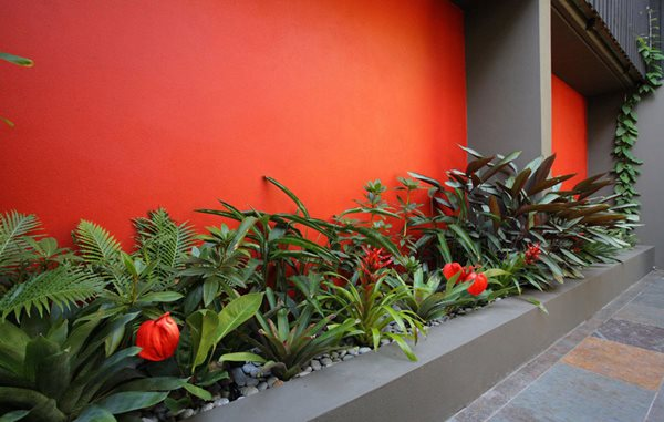 6 Cutting-Edge Garden Trends from Australia Garden Design Calimesa, CA