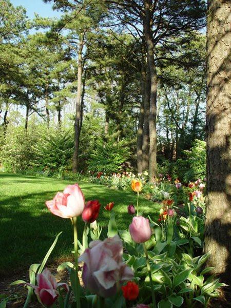 A Cool, Quiet Corner Of The World Garden Design Calimesa, CA