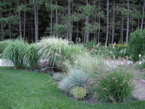 Perennial Plant Garden Design perennial garden design choosing beautiful and low maintenance flowering plants A Rustic Perennial Paradise Plant Paradise Country Gardens Caledon On