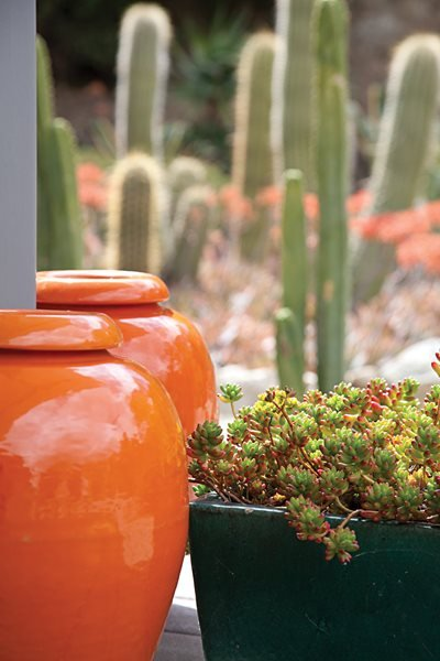 A Waterwise Cactus Garden, Photo Gallery Garden Design Calimesa, CA