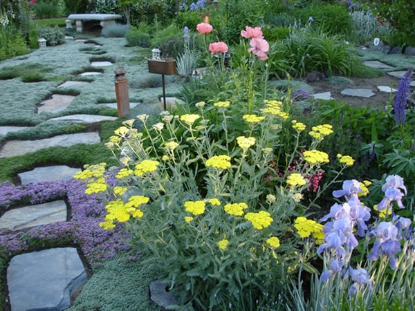 My Garden: An Ever-Changing Therapy Garden  Garden Design Calimesa, CA