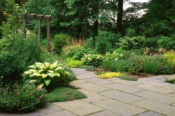 Shade Garden Plan Zone 7