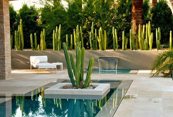 Award-Winning Gardens Steve Martino & Associates Phoenix, AZ