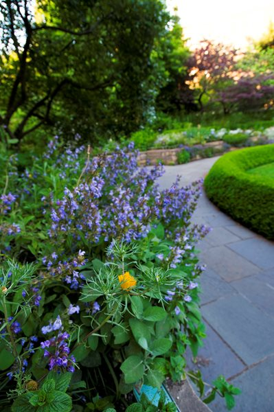 Brooklyn Botanic Garden's 100th Anniversary Garden Design Calimesa, CA