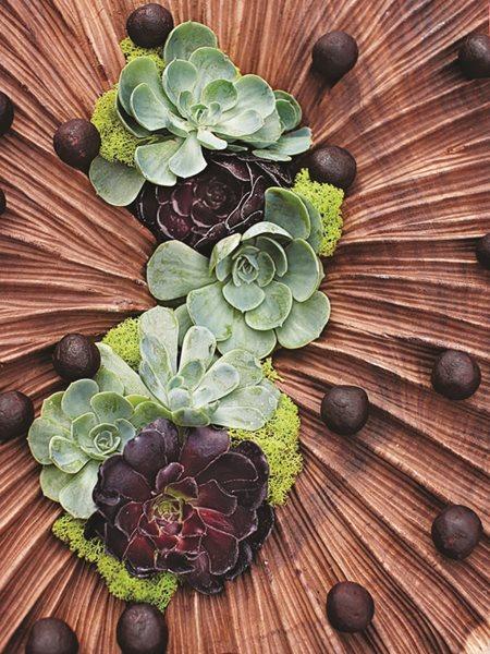 California Dreaming: A Davis Dalbok Garden