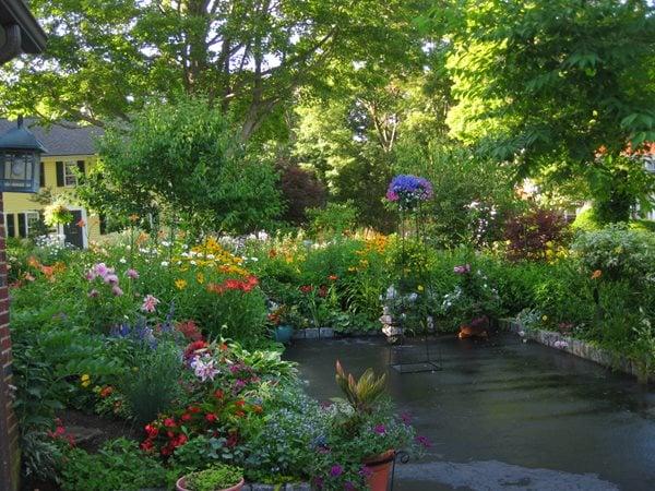 Color In Massachusetts - Gallery | Garden Design