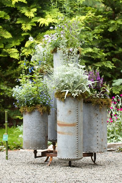 Container Garden Pictures Kate McCarty Organic Landscapes Amagansett, NY