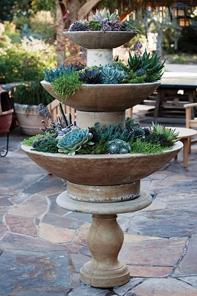 Container Garden Pictures succulent in tiered tray