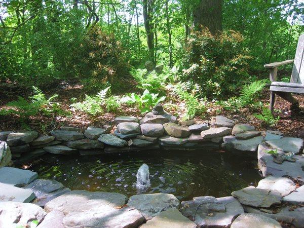 Creating a shade garden gallery garden design for Koi pond shade ideas
