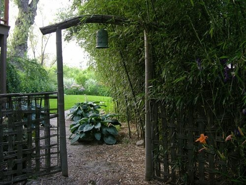 designing with bamboo garden design calimesa ca - Garden Design Using Bamboo
