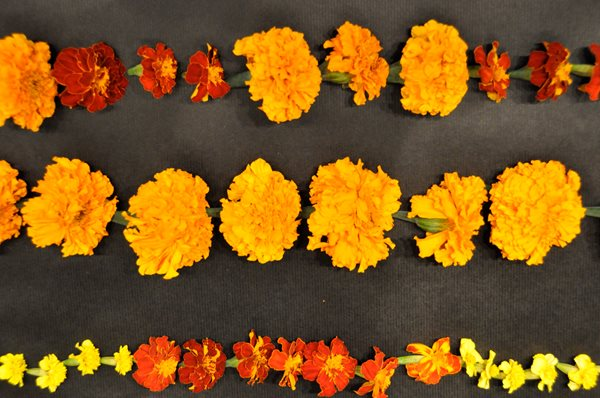 Notes from a Flower Farm: DIY Marigold Garlands Garden Design Calimesa, CA