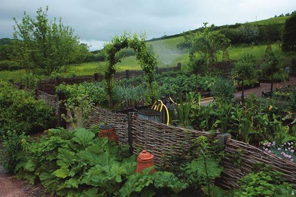 Best Ideas About Book Garden Edible Design Edible garden