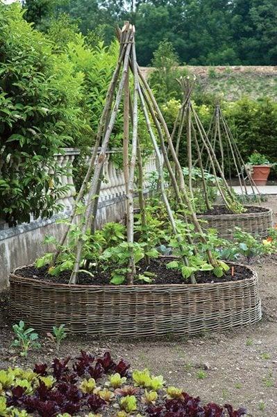 Edible Garden Pictures Gallery Garden Design