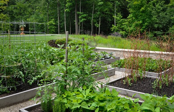 Bountiful Edible Garden Pictures McCullough's Landscape & Nursery LLC Johnstown, OH