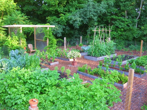 Edible Garden Pictures Kevin Lee Jacobs ,