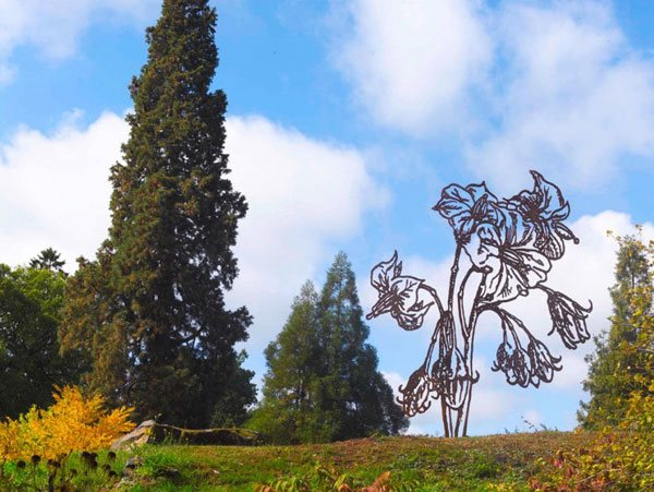 Art & Botany: Flowers of Steel Garden Design Calimesa, CA