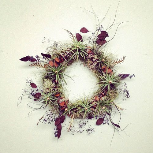 Fall Décor, Wreath, Airplants From-the-Garden Wreaths for Holiday Decorating: Slideshow Garden Design Calimesa, CA